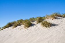 Free Beach Stock Images - 18944944