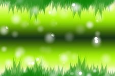 Green Spring Royalty Free Stock Image