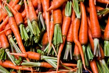 Free Carrots Royalty Free Stock Photo - 18948445