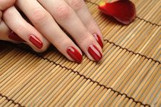 Free Beautiful Hand With Perfect Nail Red Manicure Royalty Free Stock Photography - 18948477