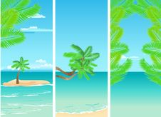 Free Tropical Banners Stock Image - 18949711