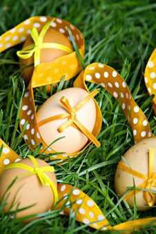 Free Easter Eggs Hidden In The Grass Stock Images - 18950894