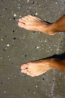 Free Feet In The Sand Stock Photography - 18951072
