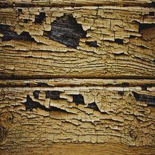 Free Old Tree Stump Stock Photo - 18951320