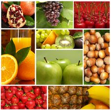 Free Fruits Stock Photography - 18951952