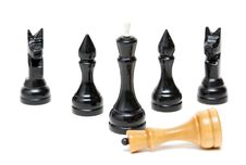 Free Chess Black Defeated The Bright King. Royalty Free Stock Photo - 18953615