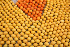 Mosaic Made Of Citrus Stock Photo
