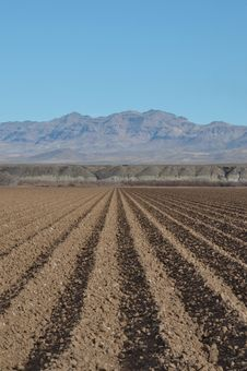 Free Arizona Freshly Plowed Farmland Royalty Free Stock Photos - 18958308