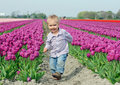 Free Boy In Tulip Field Stock Photo - 18966900