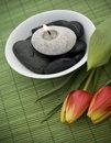 Free Spring Zen Like SPA Royalty Free Stock Photos - 18969118