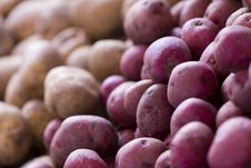Free Potatoes Royalty Free Stock Photography - 18960477