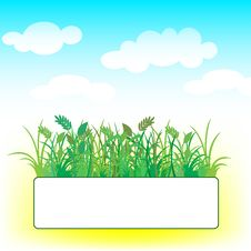 Free Card With Grass And Clouds Stock Photos - 18960813