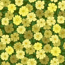 Yellow Flower Field Seamless Stock Photography