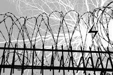 Free Wire Gauze Stock Photography - 18961762