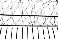 Free Wire Gauze Stock Photos - 18962373