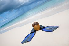 Free Coconut With Black Sunglasses And Blue Flippers Royalty Free Stock Photo - 18963165