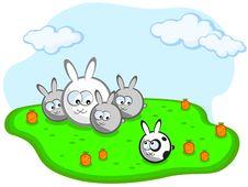 Free Family Of Rabbits Stock Photo - 18966840