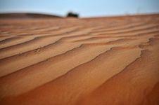 Sand Dune In Dubai, United Arab Emirates Royalty Free Stock Image