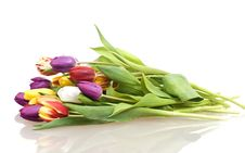 Free Bouquet Easter Tulips As A Border Stock Photography - 18969062