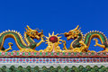 Free Asian Temple Dragon Royalty Free Stock Photography - 18979967