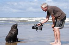 Free Man On Beach With A Seal Royalty Free Stock Photo - 18971295