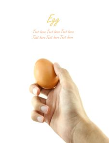 Free Hand Holding Egg Stock Images - 18971854