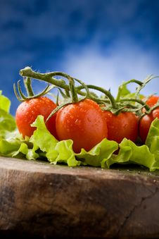 Free Tomatoes On Lettuce Stock Image - 18974771