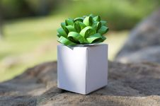 Free Little White Box Royalty Free Stock Images - 18974949