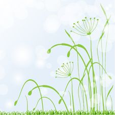 Free Spring Grass, Fresh  Background Stock Image - 18976461