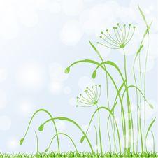 Free Spring Grass, Fresh  Background Stock Image - 18976461