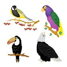 Free Illustration Of The Varied Birds Stock Photography - 18978912