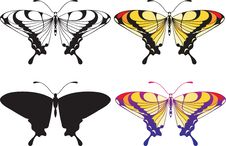 Free Set Of Butterflies Stock Image - 18979631