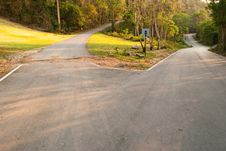 Free Three Road In The Park. Royalty Free Stock Images - 18979879