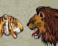 Free Tiger & Lion Royalty Free Stock Photos - 18980338