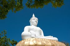 Free White Buddha Image Stock Photography - 18980752