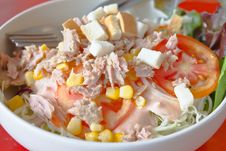 Tuna Salad With Vegetables Royalty Free Stock Images
