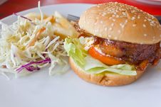 Free Chicken Burger With Tomato Cucumber Lettuce Stock Photography - 18985922
