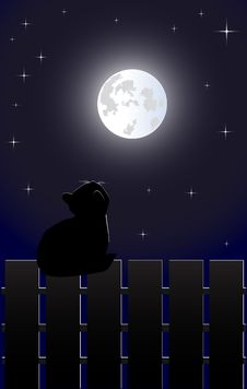Free Cat On The Fence Royalty Free Stock Image - 18990086
