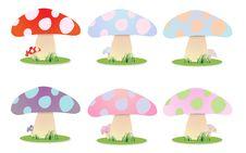 Free Mushrooms Royalty Free Stock Image - 18996646