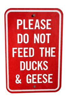 Free Please Don T Feed The Ducks! Stock Photos - 190833