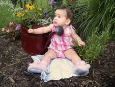 Free Baby In Garden Royalty Free Stock Photography - 195007