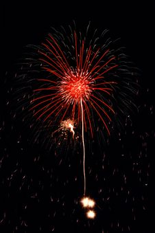 Free Fireworks Flower Royalty Free Stock Image - 197746