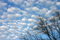 Free Perfect Cloudy Sky Royalty Free Stock Images - 1901969
