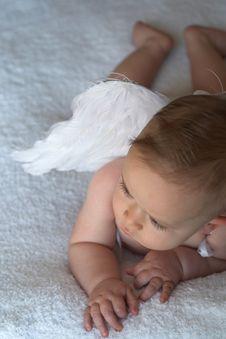 Angel Baby Stock Photography