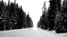 Free Winter Drive Royalty Free Stock Photography - 1900627