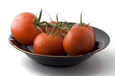 Free Wet Tomatoes In A Bowl Stock Photo - 1903420