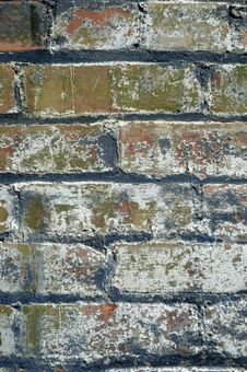 Free Grunge Brick Wall Royalty Free Stock Photo - 1904585