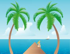 Free Tropical Afternoon Royalty Free Stock Photo - 1906185