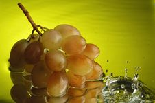 Free Grapes 2 Stock Photography - 1907362