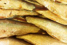 Free Fish Bakground Royalty Free Stock Photo - 1907915
